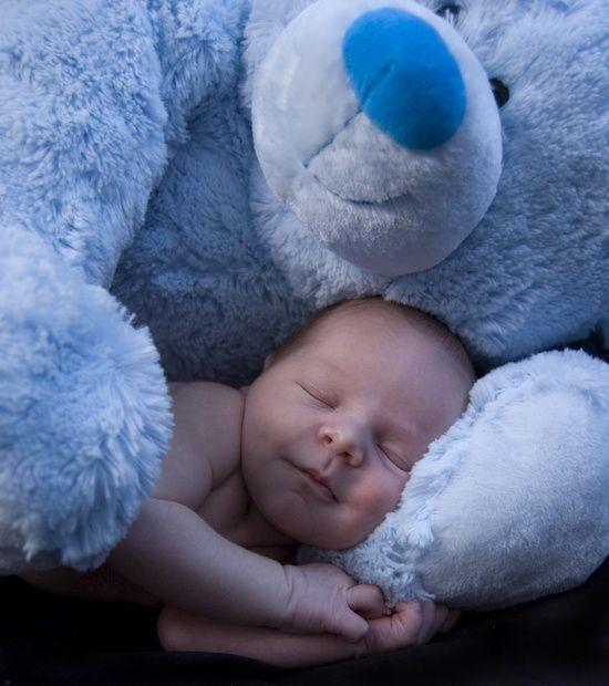 bebes vs peluches-bebeazul.top (17)