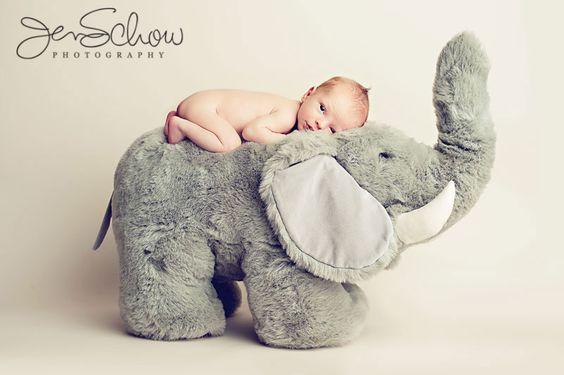 bebes vs peluches-bebeazul.top (5)