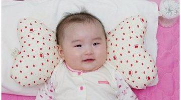 almohada mariposa bebe tutorial-bebeazul.top