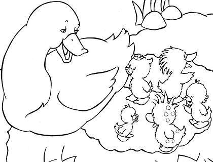 dibujo para colorear-animales-bebeazul.top (17)