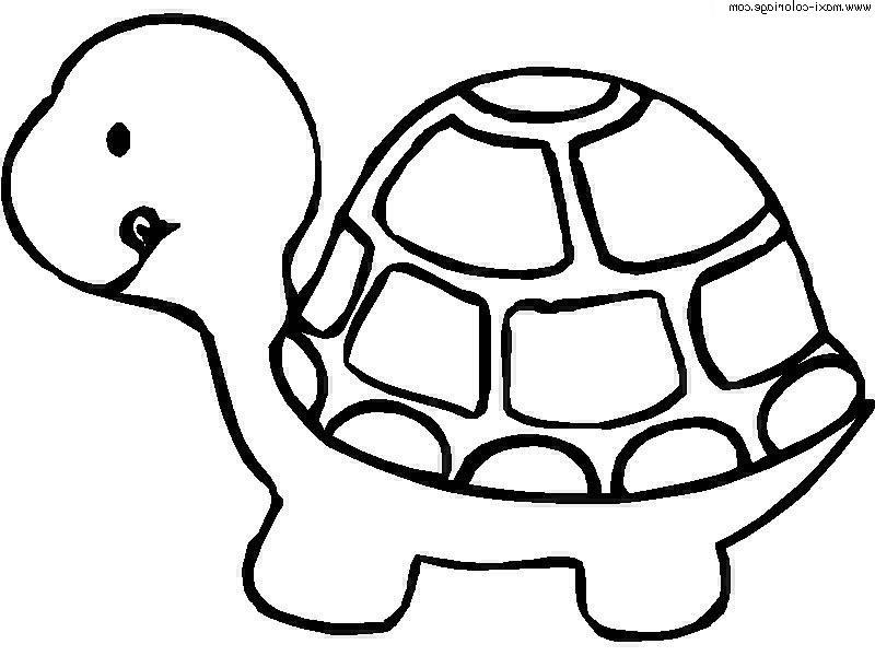 dibujo para colorear-animales-bebeazul.top (9)
