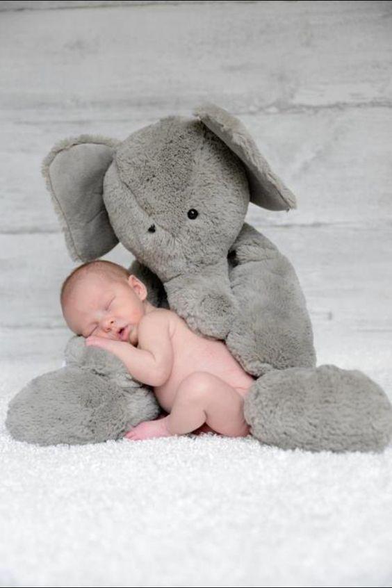bebes vs peluches-bebeazul.top (37)