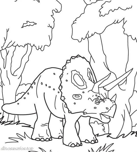 triceratops-dibujo-colorear-bebeazul.top (7)