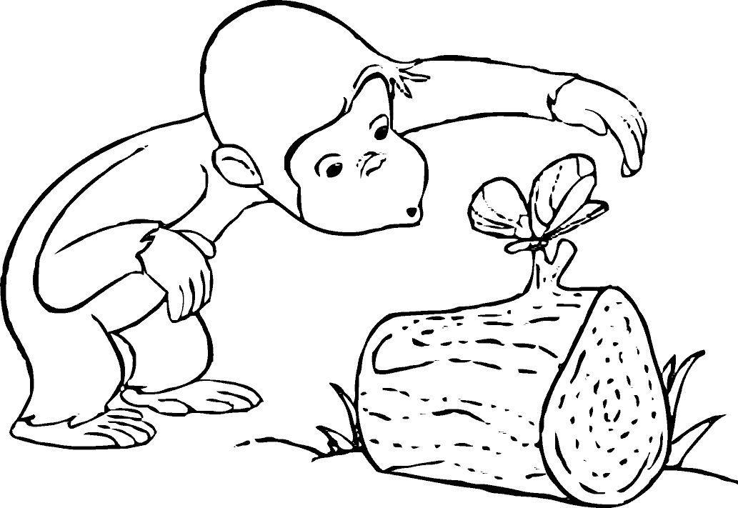 dibujo para colorear-animales-bebeazul.top (2)
