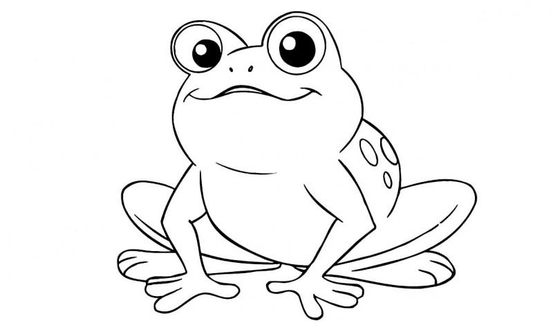 dibujo para colorear-animales-bebeazul.top (26)