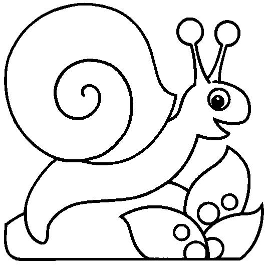 dibujo para colorear-animales-bebeazul.top (6)